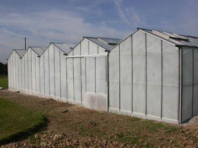Installation d\'une serre [Articles du Cactus Francophone]