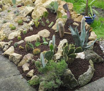 Petite rocaille deviendra grande for Faire une rocaille au jardin