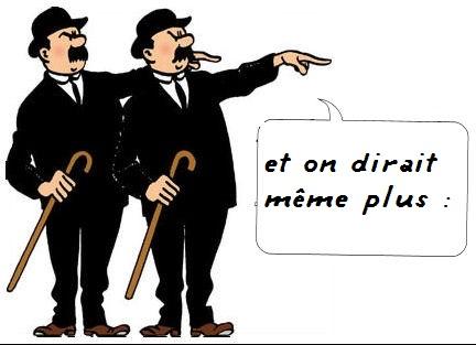 dupont_dupond.jpg