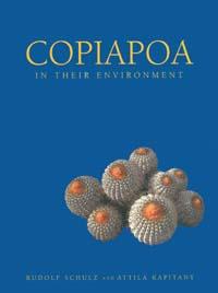 Copiapoa_in_their_environment.JPG