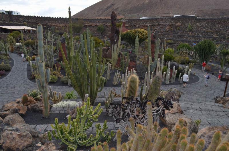 Jardin de Cactus Manrique Lz DSC_1803.JPG