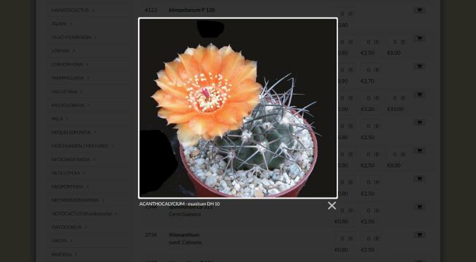 Screenshot_2020-09-15Kakteen-PiltzSamenshop.png