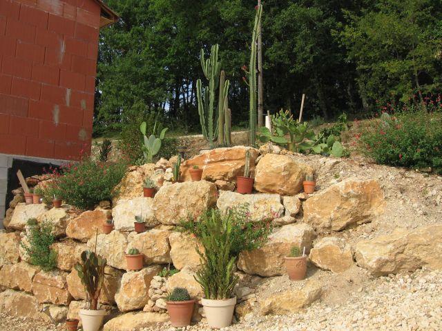 Cactus jardin for Cherche jardin a entretenir