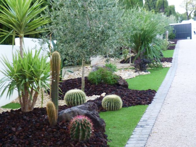 am nagement jardin sec avec cactus. Black Bedroom Furniture Sets. Home Design Ideas