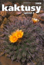 Thelocactus rinconensis and its relatives