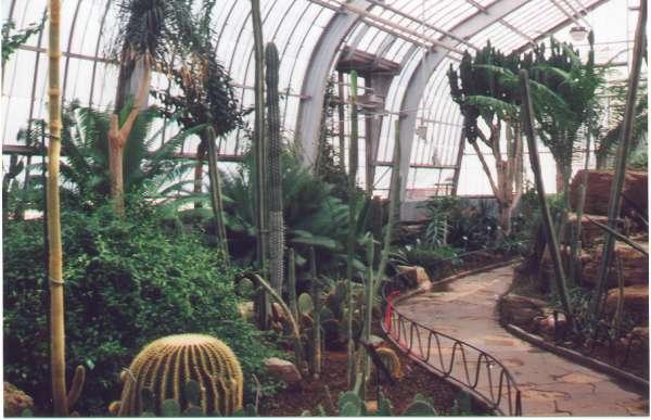 Au cactus francophone jardin botanique de montr al for Au jardin de fanny montreal